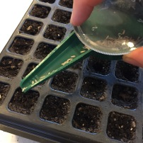 Hand seed sower for tiny seeds