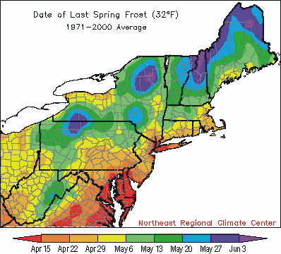 new england frost map